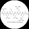 Acetyl Hexapeptide 3