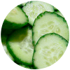 Cucumis Sativus (Cucumber) Fruit Extract